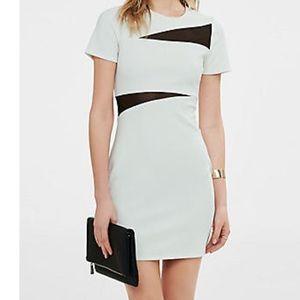 Dresses & Skirts - Express Sheath Dress, Mesh Inset Jacquard Sheath
